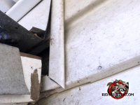Sloppy roof flashing allowed bats into a house in Birmingham Alabama