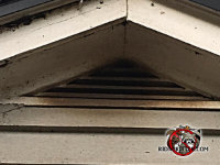 Bat guano stains on the outside of a gable vent at a house in Valdosta Alabama