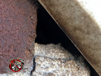 Triangular gap in the bricks about one inch across allowed bats into a house in Birmingham Alabama