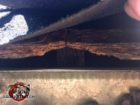 Flying squirrel gnawed a hole through the roof sheathing