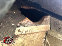 Flying squirrels gnawed through the shingles and fascia board of a house in Hoover Alabama