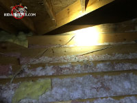Different colors and types of insulation in an attic in Buford has been matted down by animals running on top of it