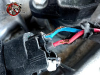 Mice gnawed the insulation on the wires leading to the ignition coils of a car