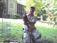 Technician holding a chicken trapped in Carrolton, Georgia