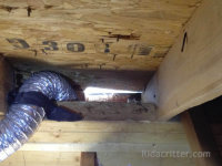 A raccoon hole next to the dryer duct in the attic of a home in Hoover, Alabama