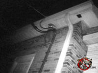 A raccoon on the top of a pipe looked down to face the camera right before it climbed into the soffit of a church in Birmingham Alabama.