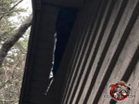 Raccoons tore a jagged hole about two feet long in the soffit panel of a house in Dunwoody Georgia