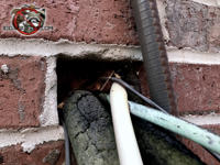 A rectangular gap around air conditioning pipes passed through a brick wall needs to be sealed to achieve non chemical rat control at a Tuscaloosa Alabama home.