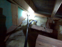 Snake in an attic in Moody, Alabama