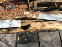 Squirrels gnawed a hole through the roof sheathing of a house in Birmingham
