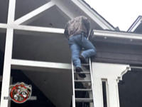 Man on a ladder sealing squirrels out of the attic of a house in Alexander City Alabama.