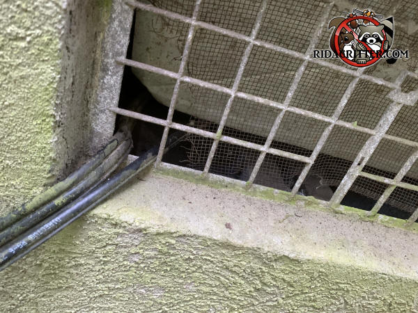 Cable TV installer shoved three wires through the screen behind the foundation vent cover lattice which allowed mice into a house in Lithia Springs Georgia