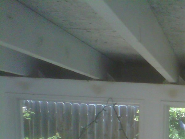 how to get rid of rats under the porch