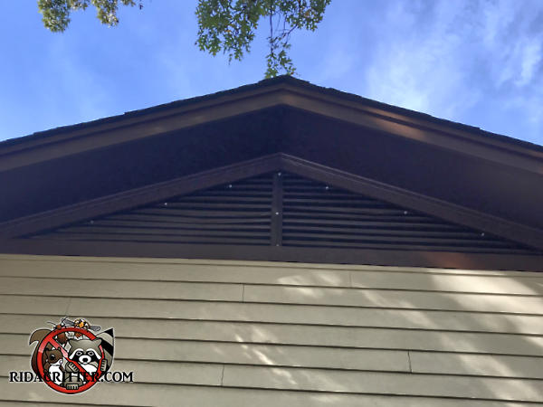 Screening applied over a triangular gable vent right under the peak of the roof to keep squirrels out of the attic of a house in Stone Mountain Georgia.